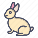 animal, bunny, cute, easter, happy, pet, rabbit icon