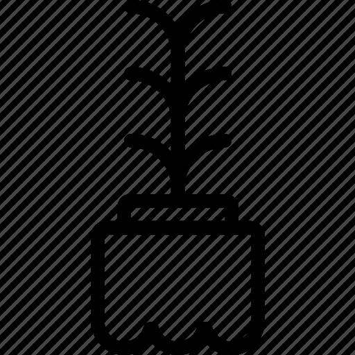 garden, plant, seedling, soil icon