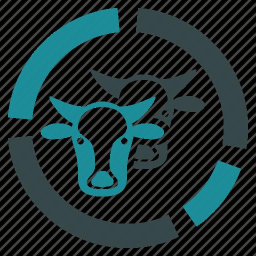 cattle, cow, diagram, farm, infographic, livestock icon