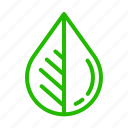 leaf, nature, water icon