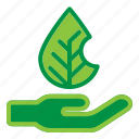 ecology, hand, nature, plant icon