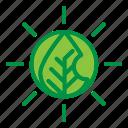 ecology, energy, environment, sun icon