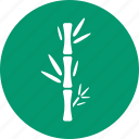 bamboo, ecology, forest, jungle, leaves, plant icon