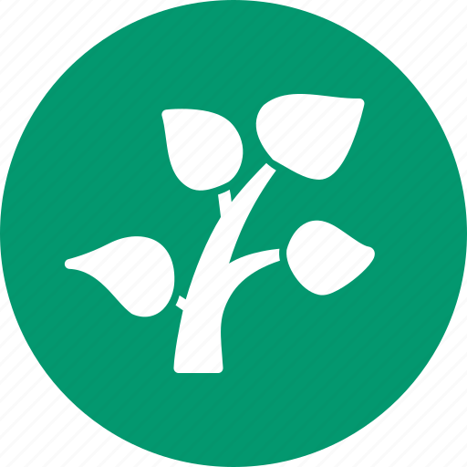 ecology, flora, grow, growth, nature, plant, tree icon
