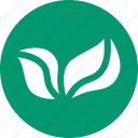ecology, environment, flora, greenery, leafs, nature, plant icon