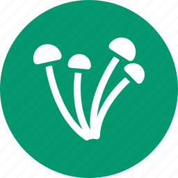 dabchick, fungi, fungus, mushroom, mushrooms, pickles, toadstool icon