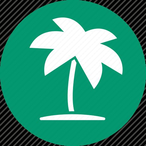 coconut palms, palm beach, tourism, travel, tree, tropical island, vacation icon