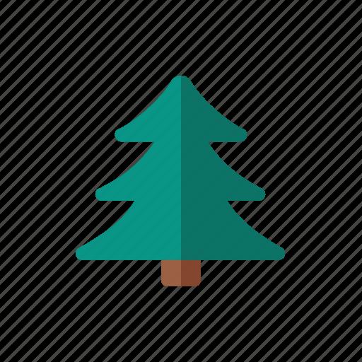 pine, tree icon