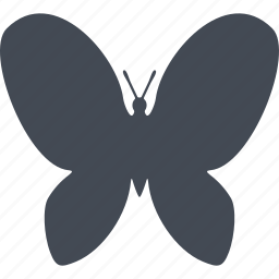 butterfly, ecology, environment, nature icon