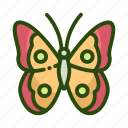 animal, bug, butterfly, ecology icon