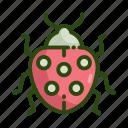 bug, ecology, lady icon