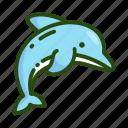 animal, dolphin, ecology, sea, sealife