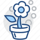 flower, grow, leaf, nature, plant, pot icon