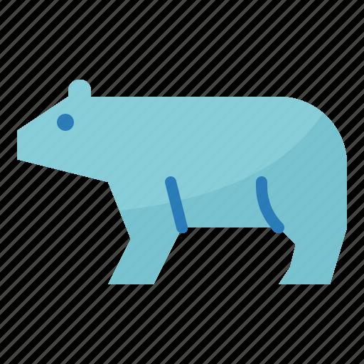 bear, berg, ecology, environment, ice, polar icon