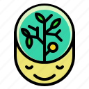 ecology, environment, green, head, think icon