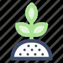 farming, garden, grow plant, plant, sprout icon