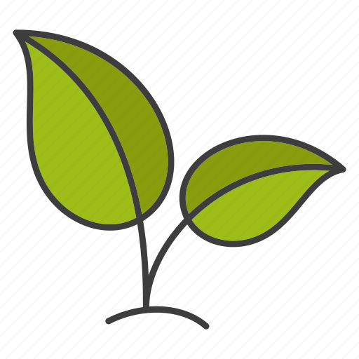 eco, ecology, environment, growth, leaf, plant, sprout icon