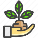 care, health, nature, plant