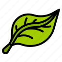ecology, green, leaf, organic, recycle icon