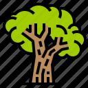 eco, environment, green, trees