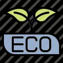 ecology, energy, clean, power, solar