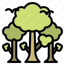 ecology, forest, nature, tree, park, trees
