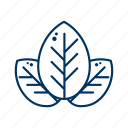 ecology, environment, go green, leaf, nature icon