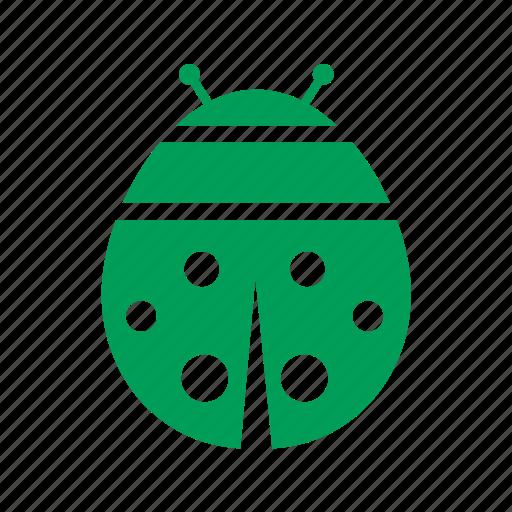 ladybug, safety, security icon