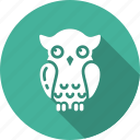 education, graduation, owl, university, wisdom icon