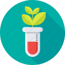 botany experiment, chemistry, experiment, lab research, laboratory icon