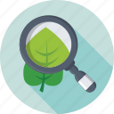 botany, leaf, magnifier, plant experiment, zoom icon