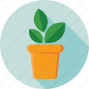 greenery, plant, plant pot, pot, potted plant icon