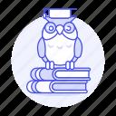 books, education, graduation, knowledge, learning, owl, school, study, university, wisdom