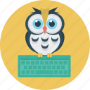 education, keyboard, learning, owl icon