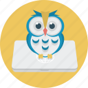 education, laptop, notebook, owl icon