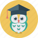 education, owl, student, student cap, wise icon