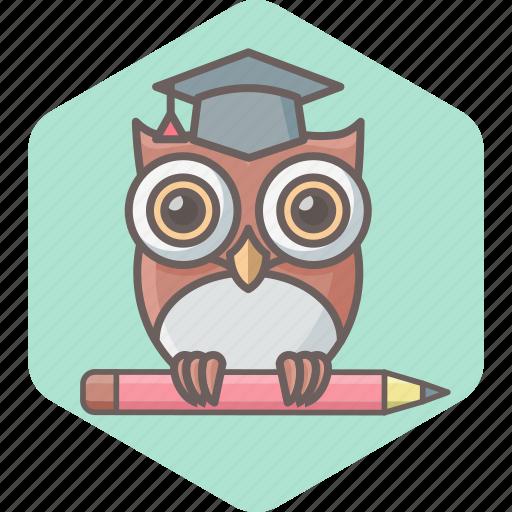 education, learning, owl, school, smartclass, teacher, university icon