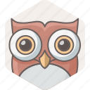 animal, education, owl, smartclass, teacher, wild, zoo icon