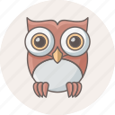 animal, bird, classroom, owl, teacher icon