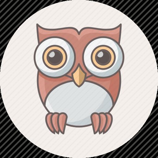 animal, bird, classroom, owl, teacher icon