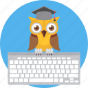 busy, cartoon, computer, keyboard, owl, teacher, working icon