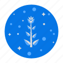 botany, nature, plant, science, young plant icon