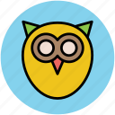 bird, education, knowledge, owl, study icon