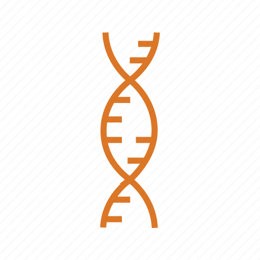 chromosome, dna, genetical science, genetics, genome, learning, science icon