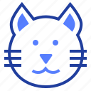 animal, cat, kitten, pet