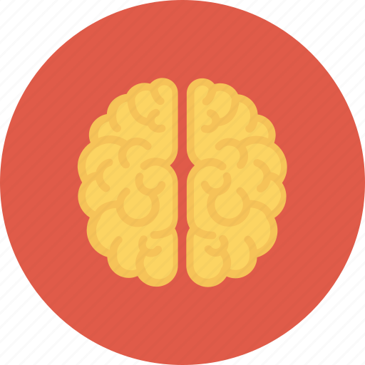 brain, learning, mind, think icon, thinking icon