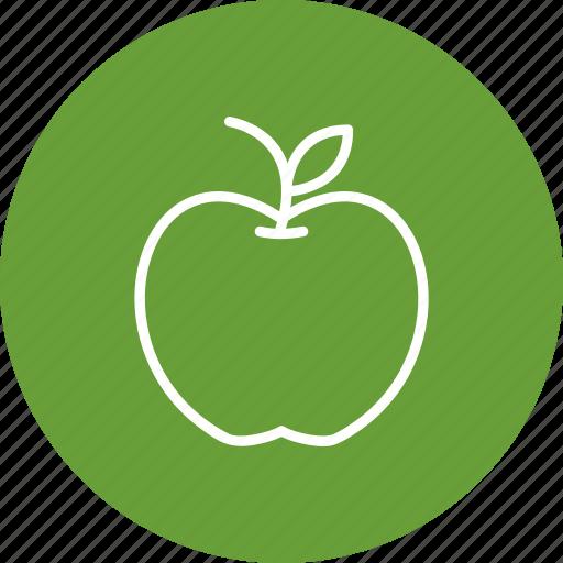apple, education, food, fruit icon