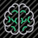 brain, creative, head, innovative, mind