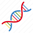 biology, chain, dna, educational, medical, science icon