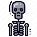 anatomy, bone, skeleton icon